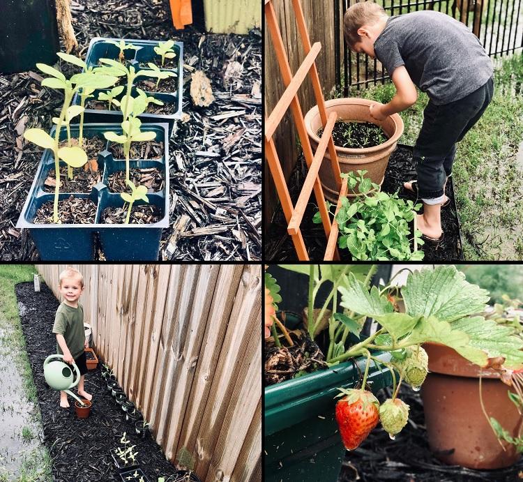 Jill Duggar Garden Instagram