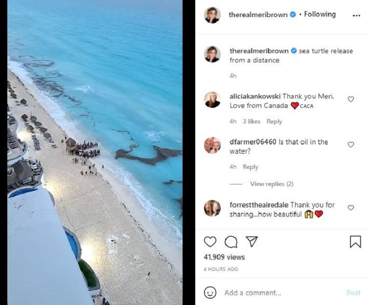 Meri Brown Post 1 Instagram